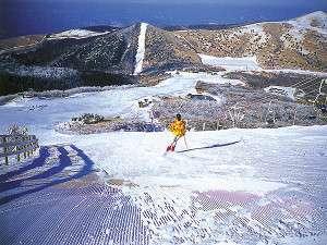 森林 スキー くじゅう 場 公園 九重森林公園スキー場