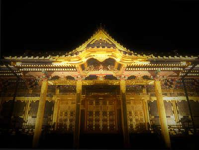 上野 公園 ライト アップ