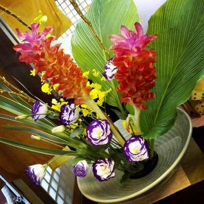 today s flower 湯布院山灯館のブログ 宿泊予約は じゃらん