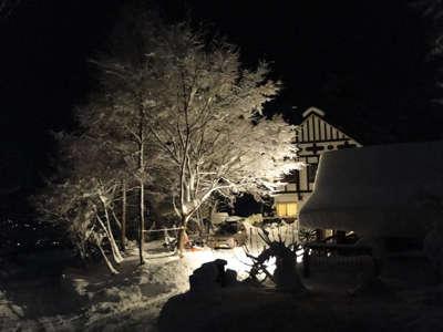 夜の雪景色も素敵です。/うちの...