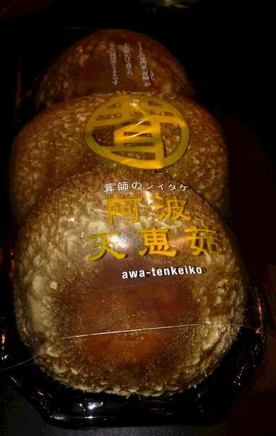 けいこ てん 大きい椎茸