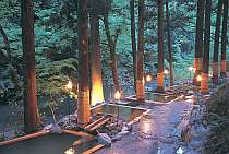 自噴源泉の宿 花つばき