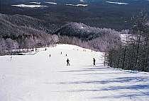 冬のスキー&スノボはゲレンデまで徒歩2分