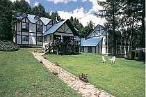 広い芝生と森に囲まれた静かなホテル