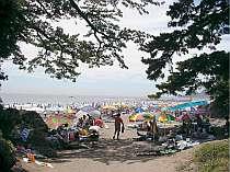 夏の伊豆、今井浜海岸、海水浴プラン・水質最高
