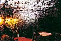 グループ、家族で貸切露天!3~5人で洞窟露天入浴付【直前割】■富士山■お子様 乳幼児も歓迎!