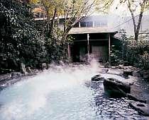 2本の源泉を所有。掛け流しの豊富な湯を堪能できる