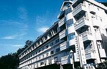 河口湖第一ホテル&ザ・プラザスイートの写真