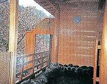 嵐山温泉嵐峡館