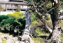 民宿 竹の城