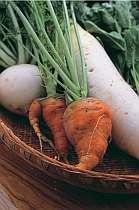 新鮮野菜を使用