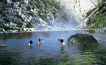 川床から温泉が湧き、川そのものが大露天の珍らしい秘湯