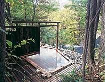 森に囲まれた秘湯ムード漂う庭園露天風呂