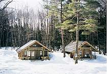静かな林の中の貸別荘