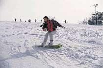 野沢温泉スキー場まで車で15分。志賀高原まで45分。