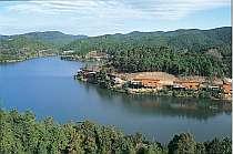 深い緑と湖に囲まれた美しい自然景観