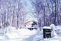 白樺林に囲まれた静かなホテル