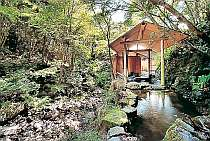 [写真]清々しい緑の木々に囲まれた露天風呂はほぼ自然の地形