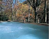 渓谷沿いに有る野天風呂。ムササビも時おり姿をみせる