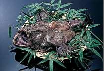 鮟鱇(あんこう)鍋付きプラン/料金アップで漁師料理の「どぶ汁」もご提供