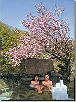 湯の小屋温泉(水上温泉郷)格安宿泊案内 清流の宿 たむら