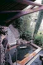 男女別の大浴場はともにスタッフ手作りの露天付!,兵庫県,加古川温泉 みとろ荘