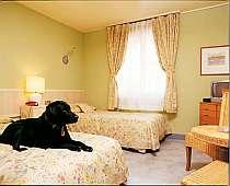 ■ ペットと一緒に泊まれるお部屋 ベッドの上もワンちゃんOK