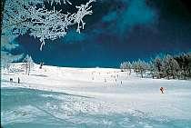 パウダースノーが嬉しい白樺湖周辺のスキー場