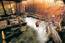 亀島川温泉新川の湯 ドーミーイン東京八丁堀