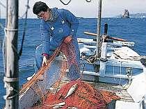 漁師の宿 おかだ