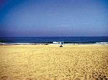 吉佐美大浜は海水浴はもちろんサーファーにも人気
