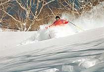 1泊2食全山共通1日券付スキープラン