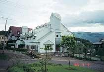 [写真]アーリーアメリカン調のシックな館