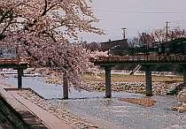 飛騨高山温泉 朝市の宿 お宿いぐち画像2