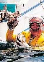 漁師民宿きみ丸
