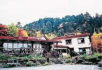 紅葉の「森の仲間」 楓・ナナカマドの赤・岳樺の黄
