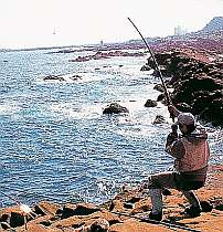 磯釣りのメッカ白間津の磯までは徒歩約5分