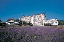 富良野プチホテル ベルヒルズ
