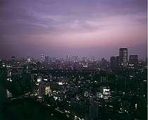 お部屋からの夜景一例