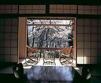 お部屋の窓から桜を愛でる事も出来る※4月頃気候や天候で開花時期は変わります