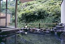 松之山温泉 和みの宿 玉城屋旅館画像1
