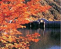 ☆飛騨高山観光、紅葉プラン