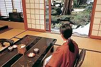 ●歴史ある庭園を客室から眺める