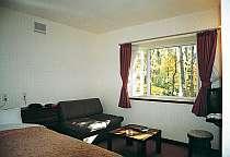 洋室:ダブルルーム205号室は禁煙対応です。