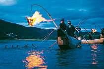 1300年の伝統を誇る、長良川風物詩「鵜飼」