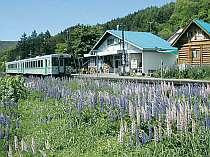 [写真]日本でただひとつ。駅舎が民宿。列車を降りて17歩で到着