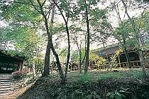 「啼鳥山荘」聞こえるのは鳥の声と風の音だけ,長野県,啼鳥山荘(ほりでーゆー)
