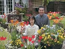 ペンションウインズ白馬 予約:長野県・白馬村