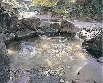 日高川を望む混浴露天