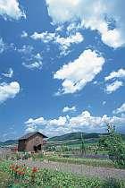 ぐるり田園風景に囲まれた好立地。十勝岳を正面に望む